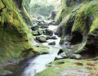 Ручей среди камней, скринсейвер