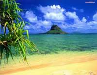 Тропический рай, скринсейвер